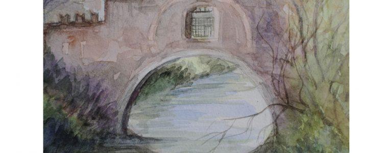 Come edera tra i sassi. La nuova raccolta poetica di Lucia Babbo